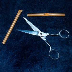 moses_staff-straw