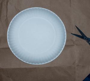 plate_bag