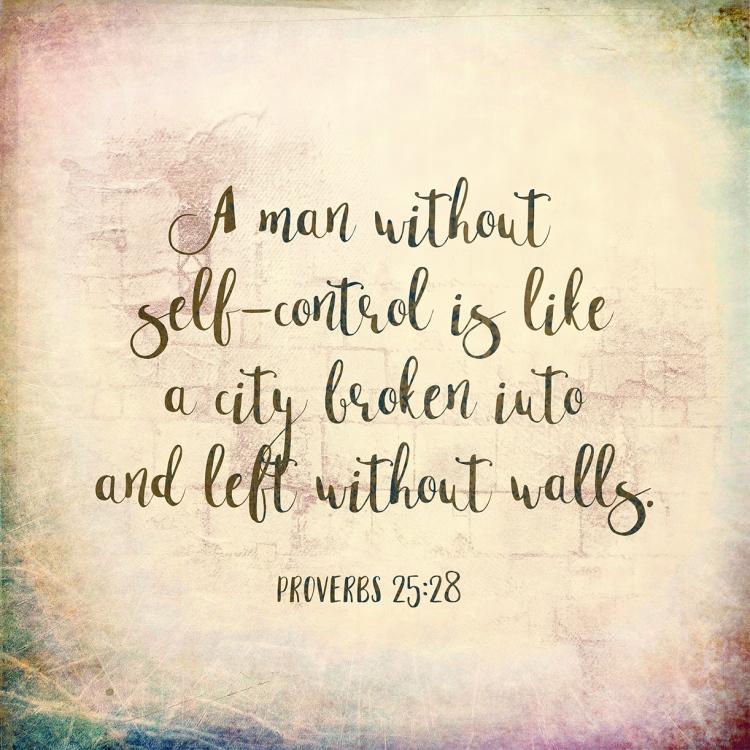proverbs_25_28