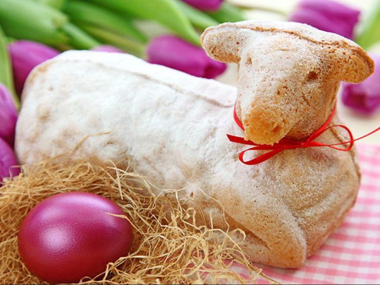 Lamb spongecake