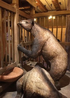 Ark_Animals