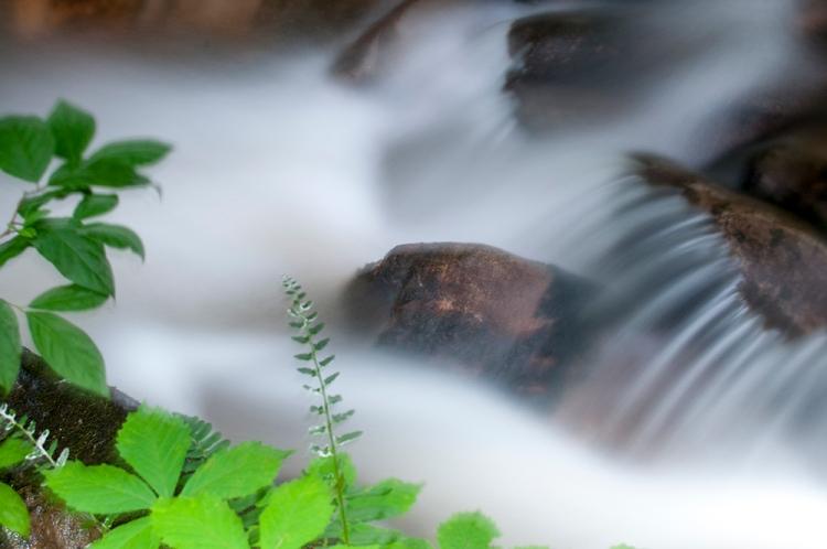 creek_longex