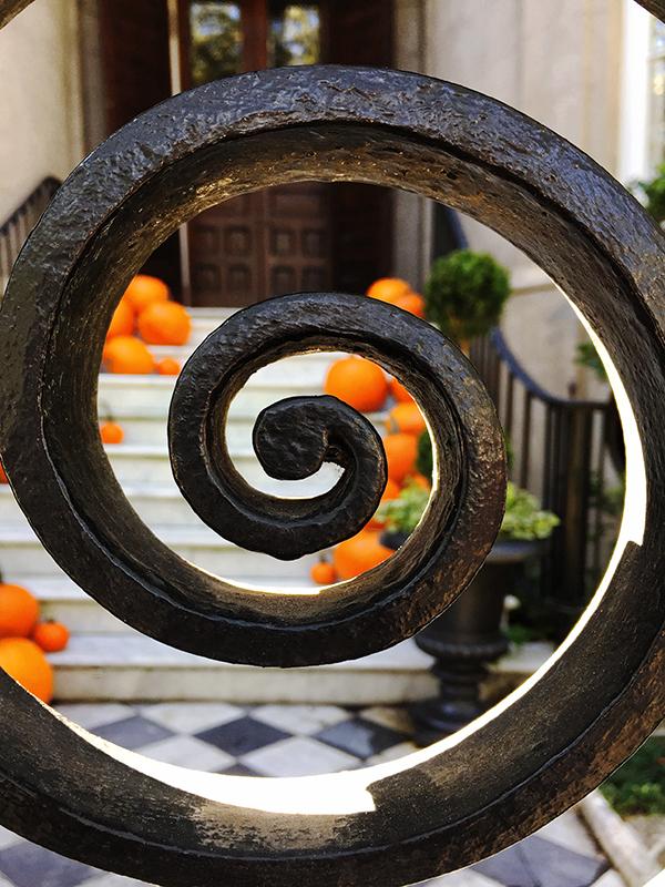 IMG_7487_Pumpkins
